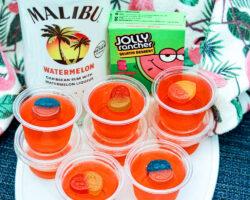 malibu watermelon jolly rancher jello shots